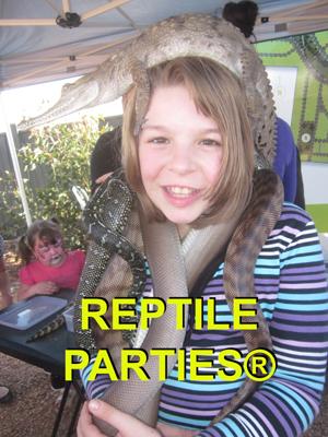 reptile parties